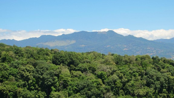 18 Acre Mountain View Farm with Rustic Home For Sale in Potrerillos Arriba, Chiriqui, Panama