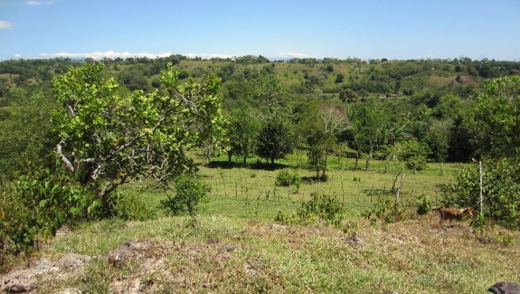 Ocean and Mountain View Building Lot For Sale in Buena Vista, Chiriqui, Real Estate Panama
