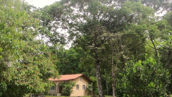 Small Farm with Home For Sale in Santa Rita, Chiriqui, Panama Real Estate