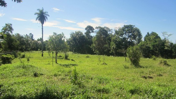 Building Lots For Sale in Potrerillos Arriba, Chiriqui, Panama